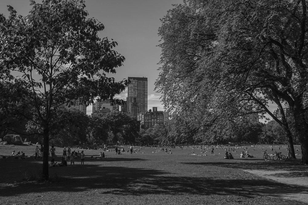 Central Park I  September 11, 2016