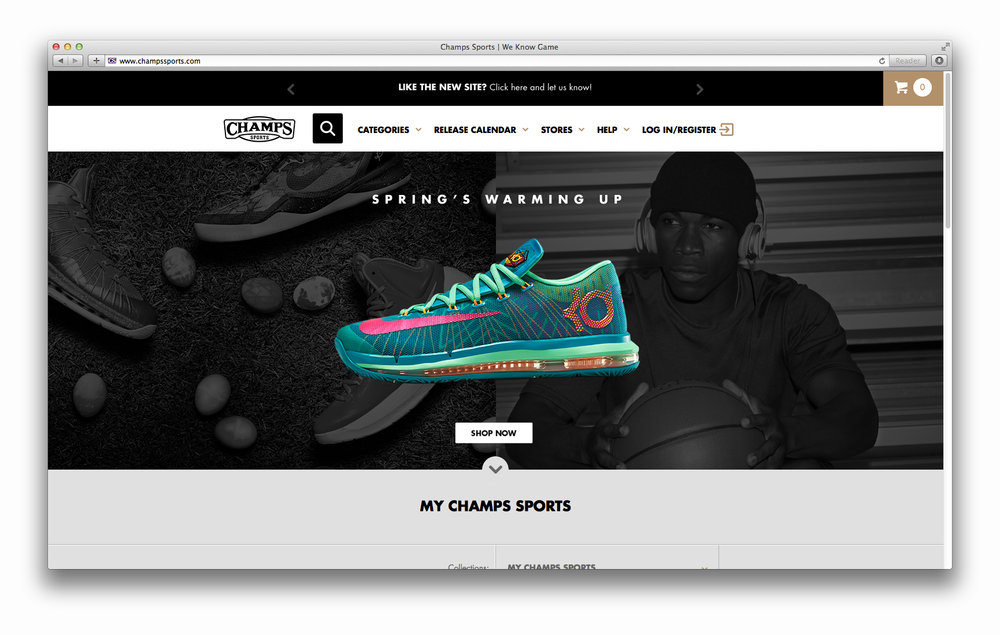 Champs_Web__0002_3.png