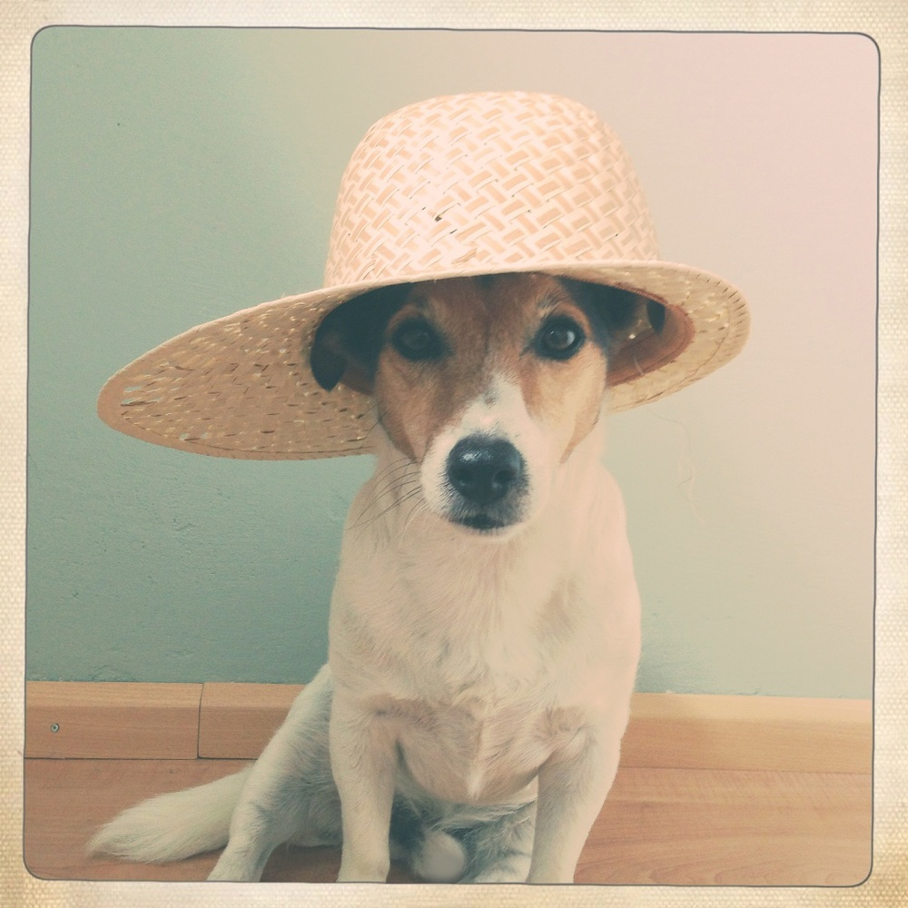 Floris makes us want to go to the beach this week. And this would be a good hat to wear!