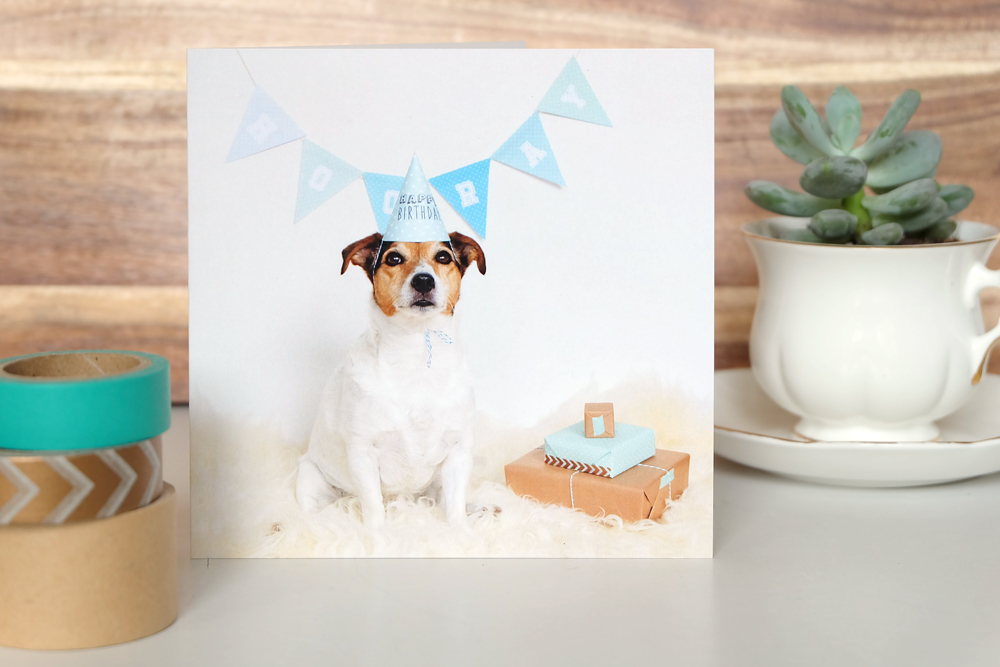 verjaardagskaart-met-hond.jpg