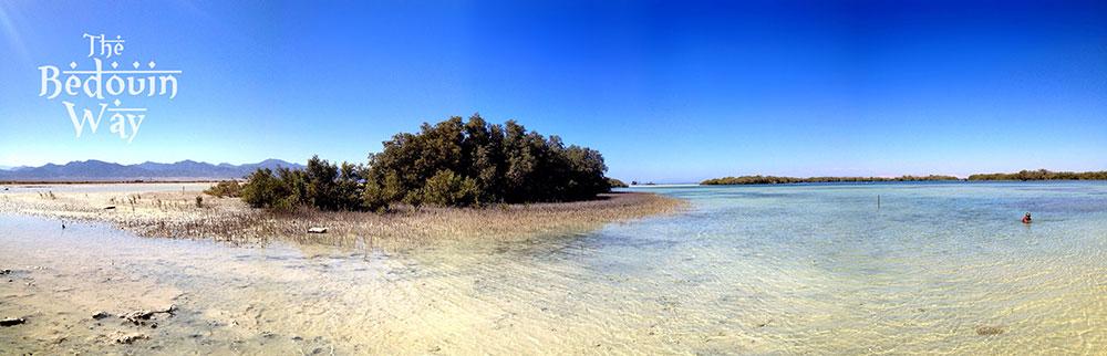 panoramic-nabq.jpg