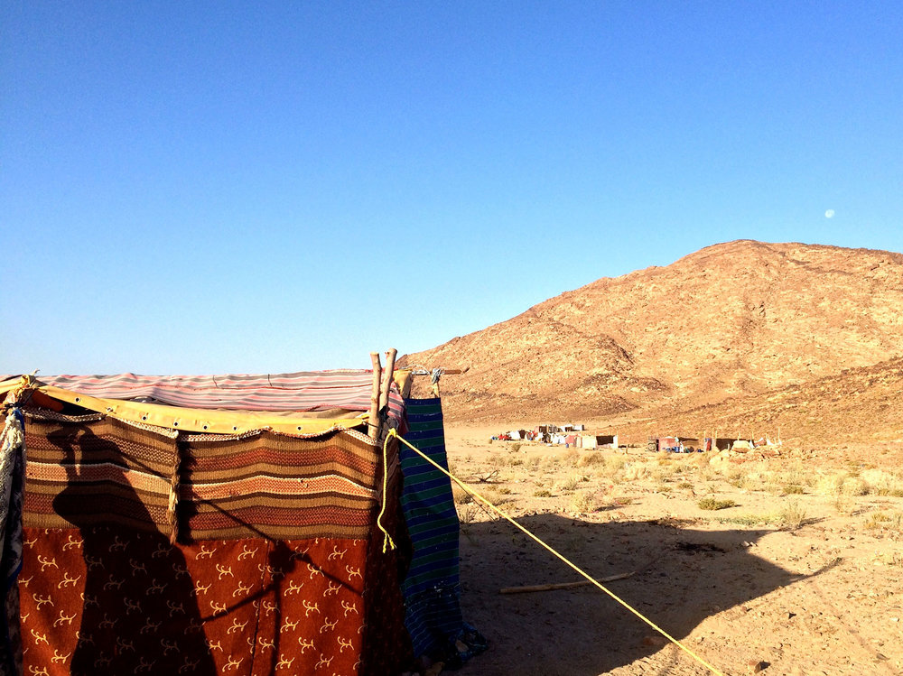 Find out about the Bedouin Life