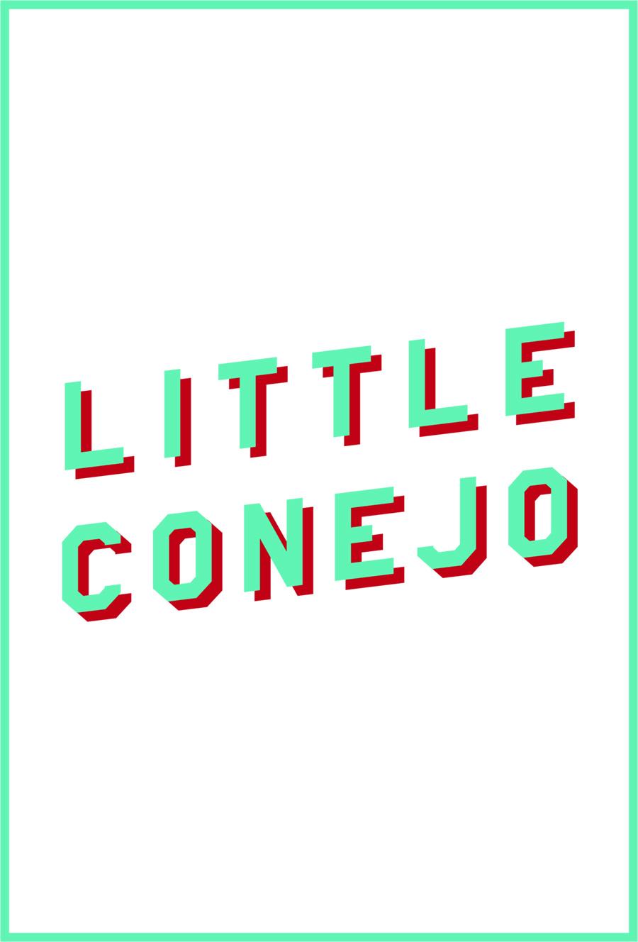 LittleConejo.jpg