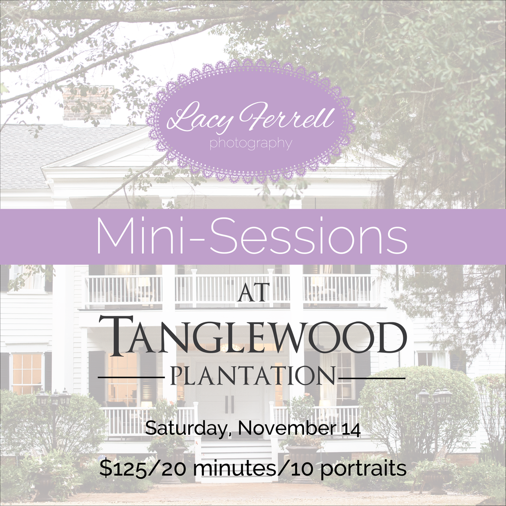 Tanglewoodminisession