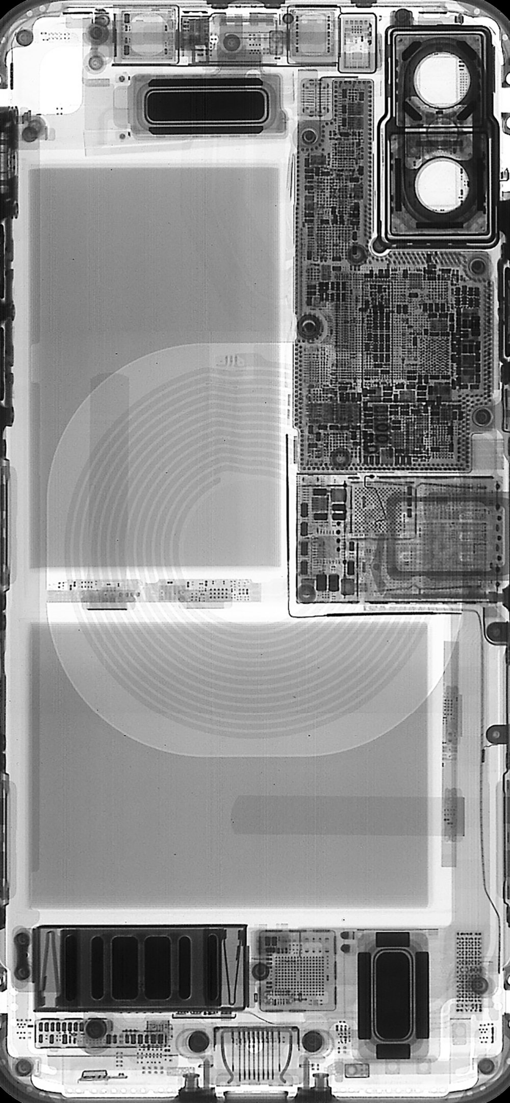 Internals xray iPhone X.jpeg