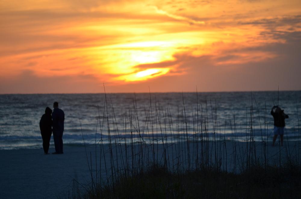 Florida 20147 014.JPG