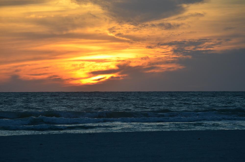 Florida 20147 027.JPG