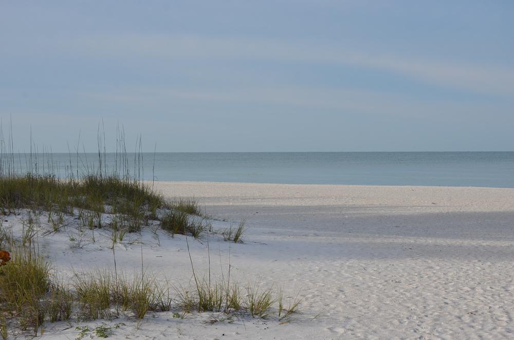 Florida 20147 050.JPG
