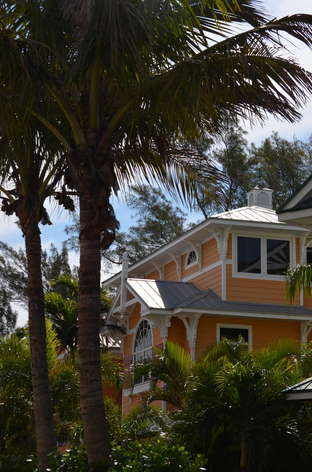 Florida 20147 175.JPG