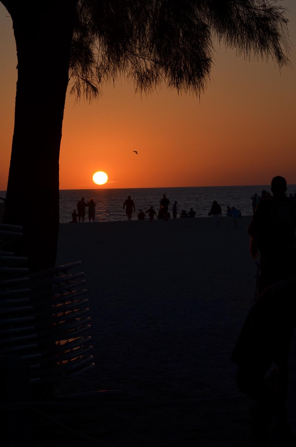 Florida 20147 259.JPG