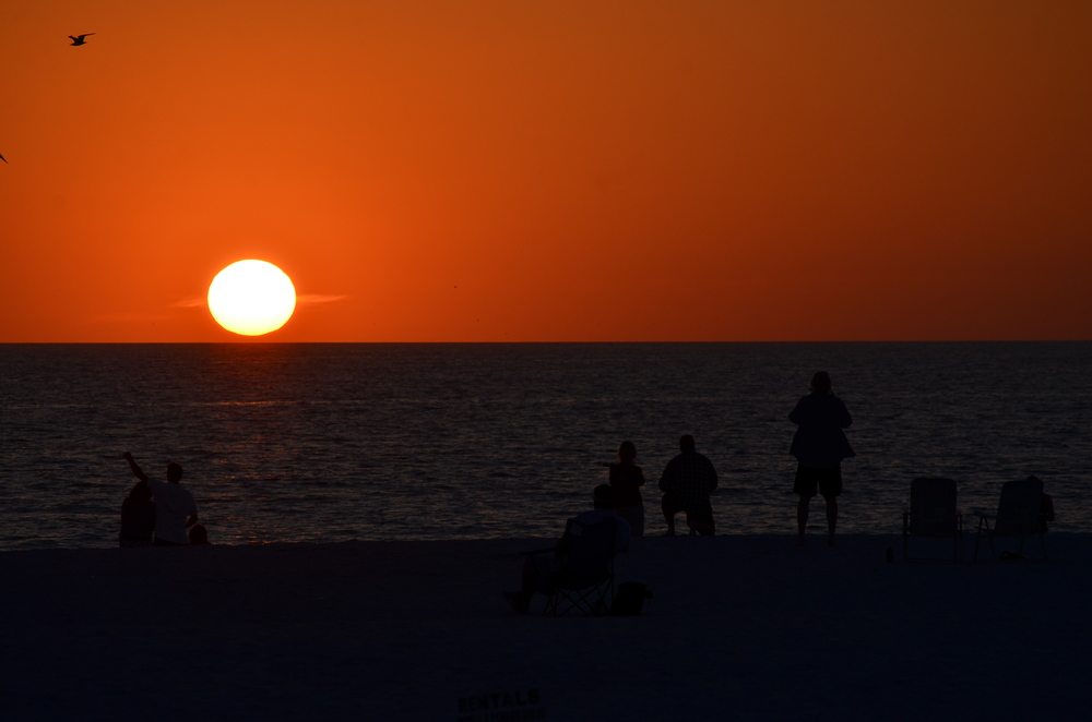 Florida 20147 261.JPG