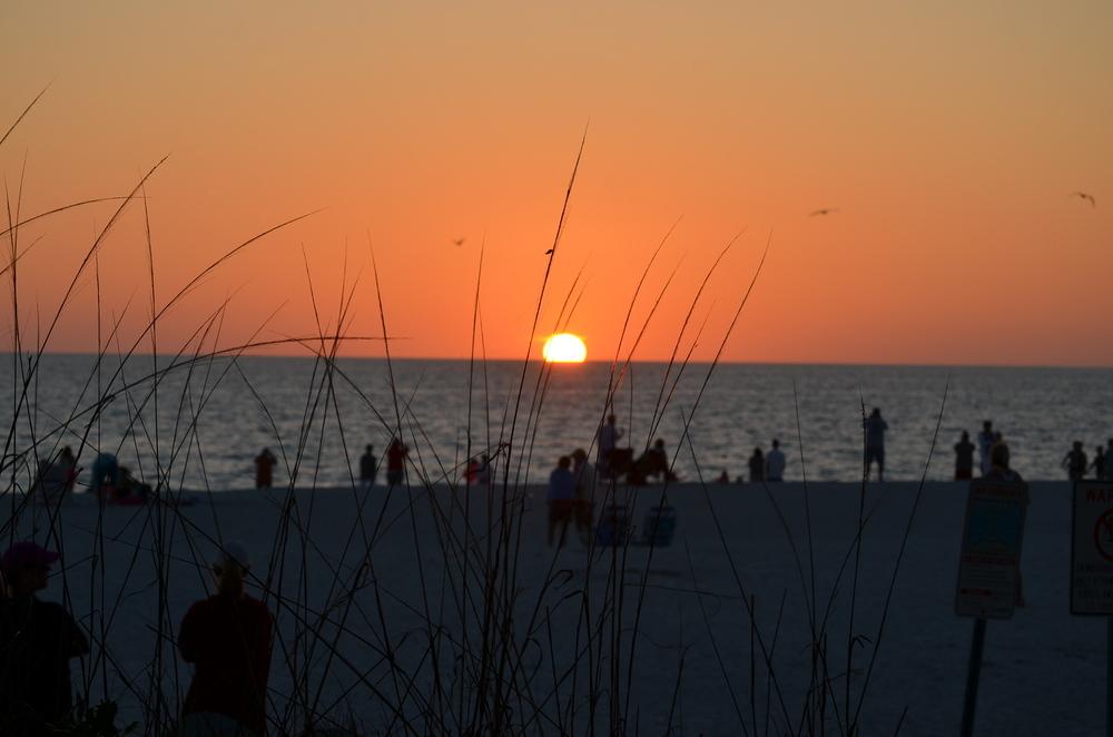 Florida 20147 269.JPG