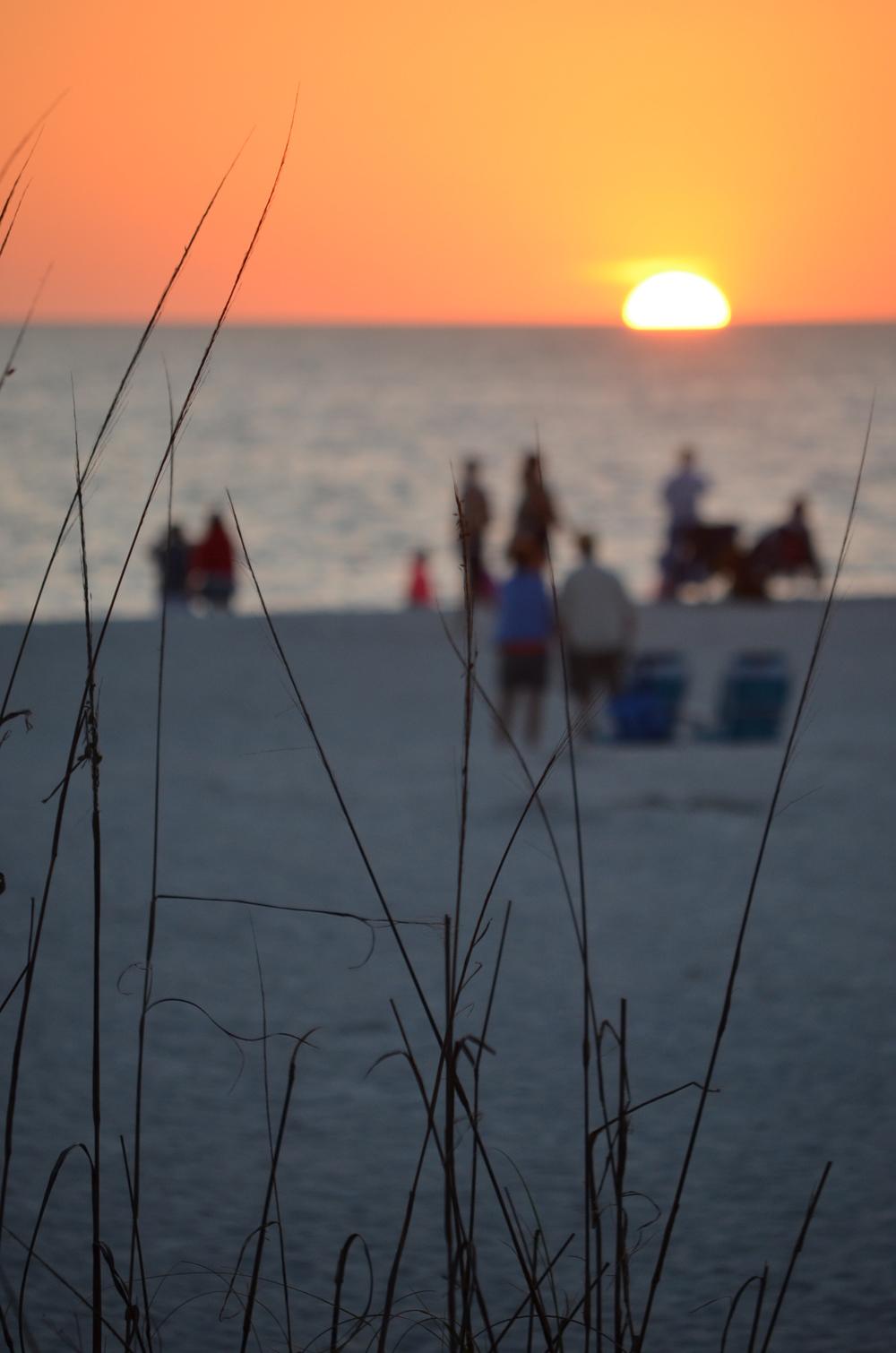 Florida 20147 272.JPG
