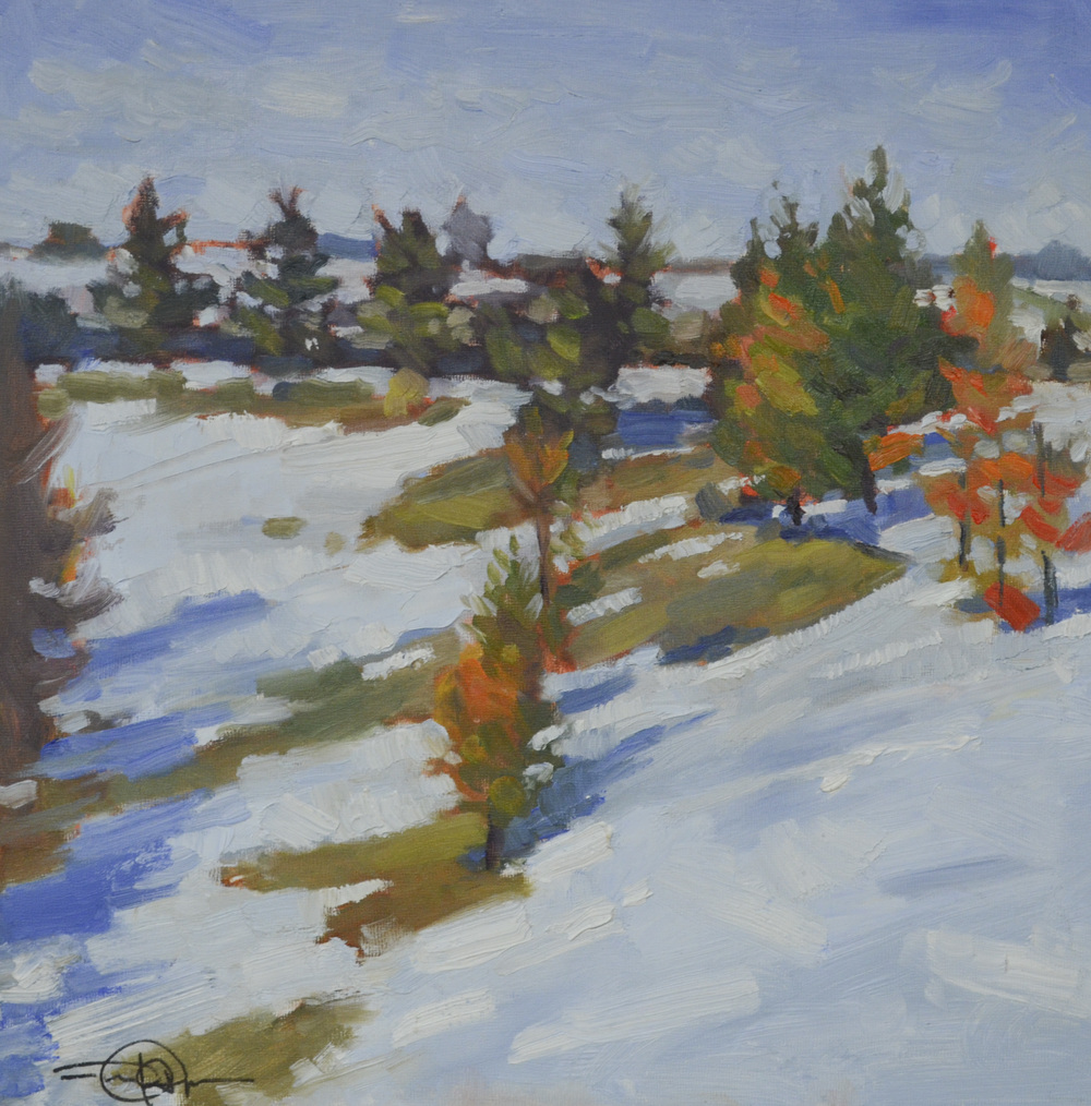 Snowy Hillside.JPG