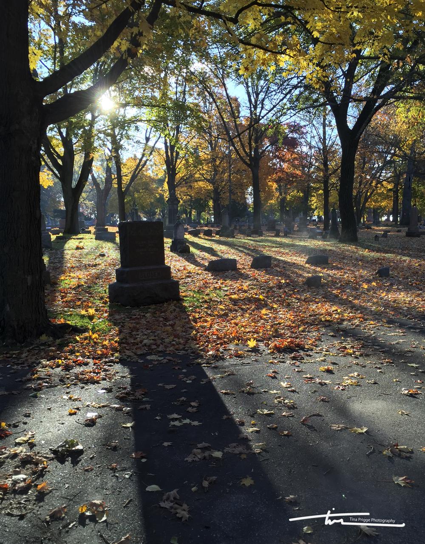 Cemetery Shadows Tina Prigge.jpg