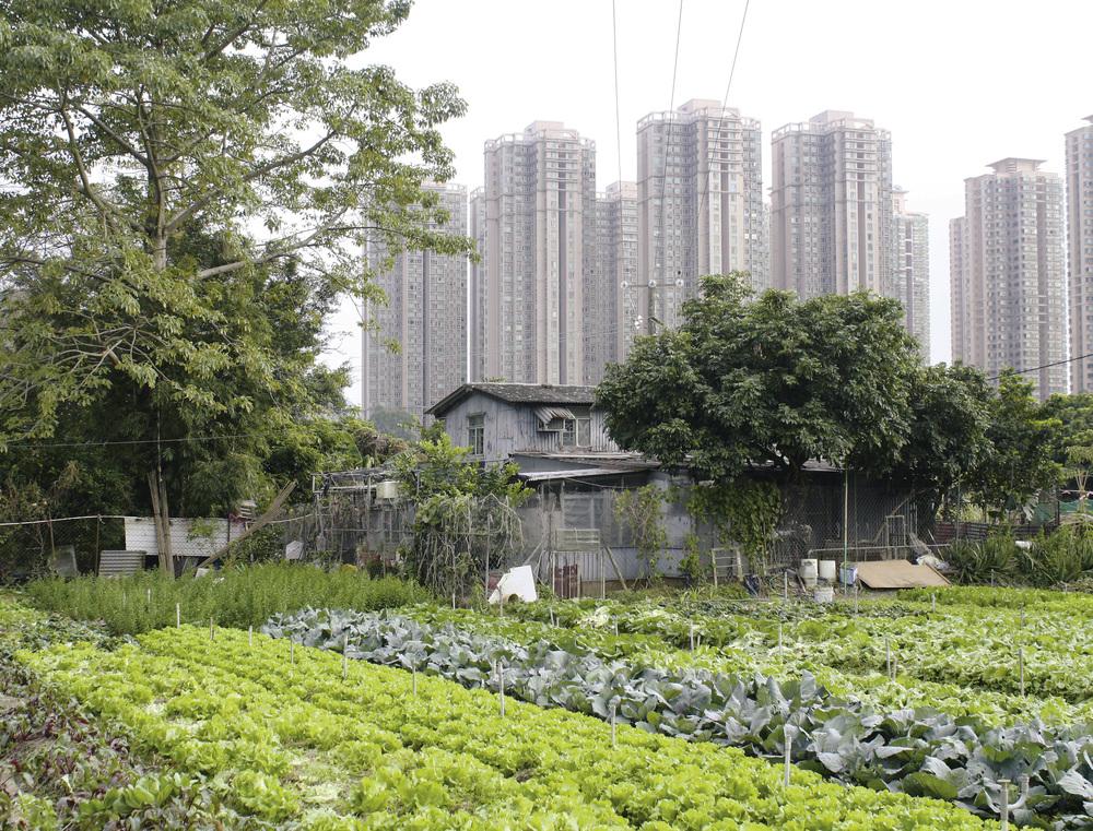 Hands-On Urbanism Ma Shi Po Village, 2012, Credit: Shu-Mei Huang