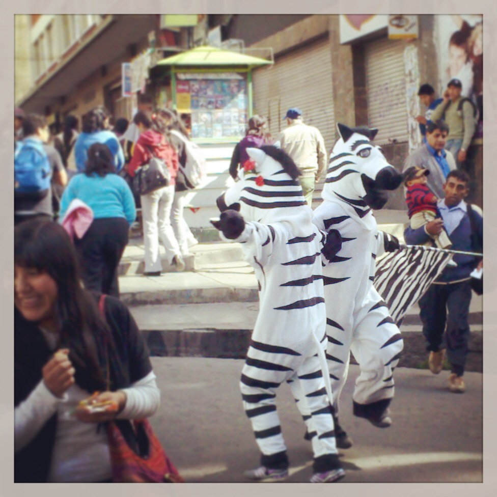 Dancing traffic zebras on the streets of La Paz, Bolivia.
