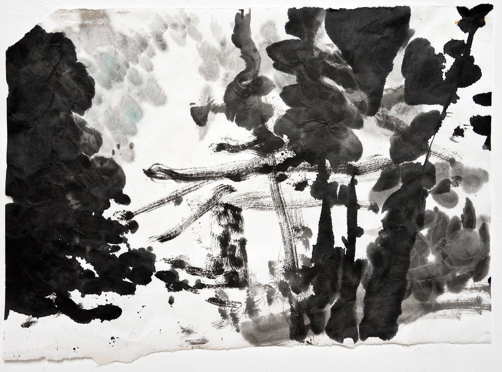 6.11.15 I  2015  ink on paper