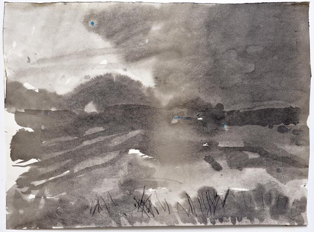 6.14.15 V  2015  ink on paper