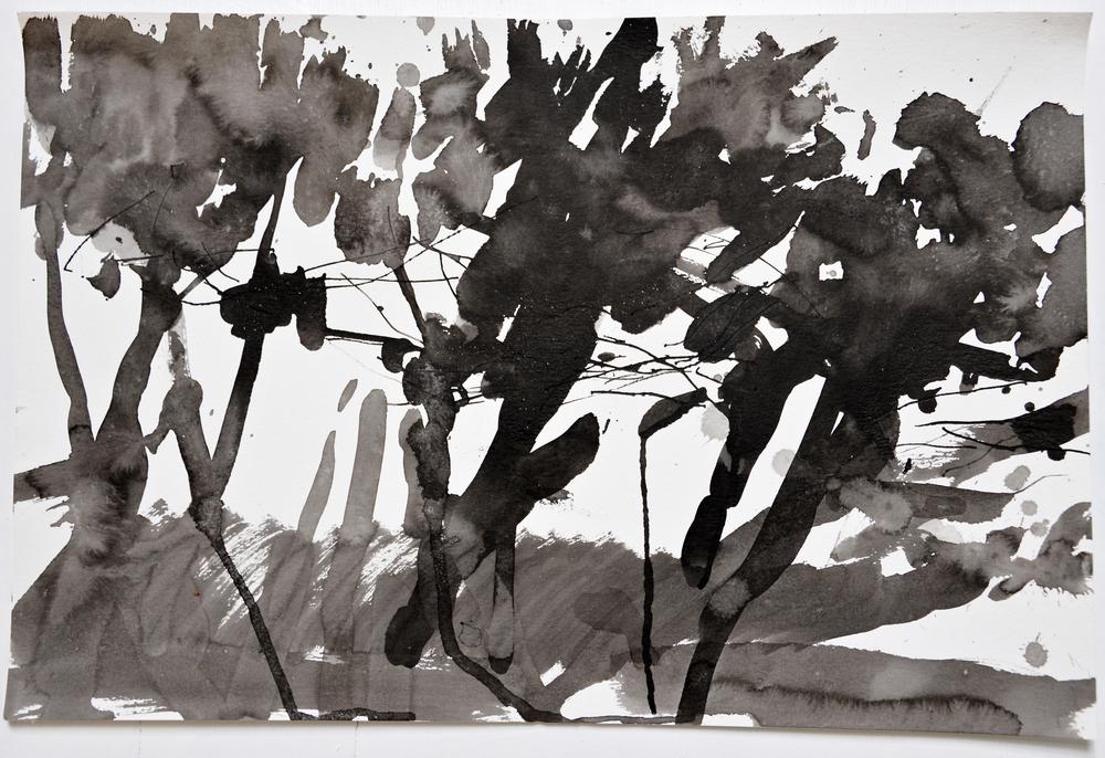 6.15.15 I  2015  ink on paper