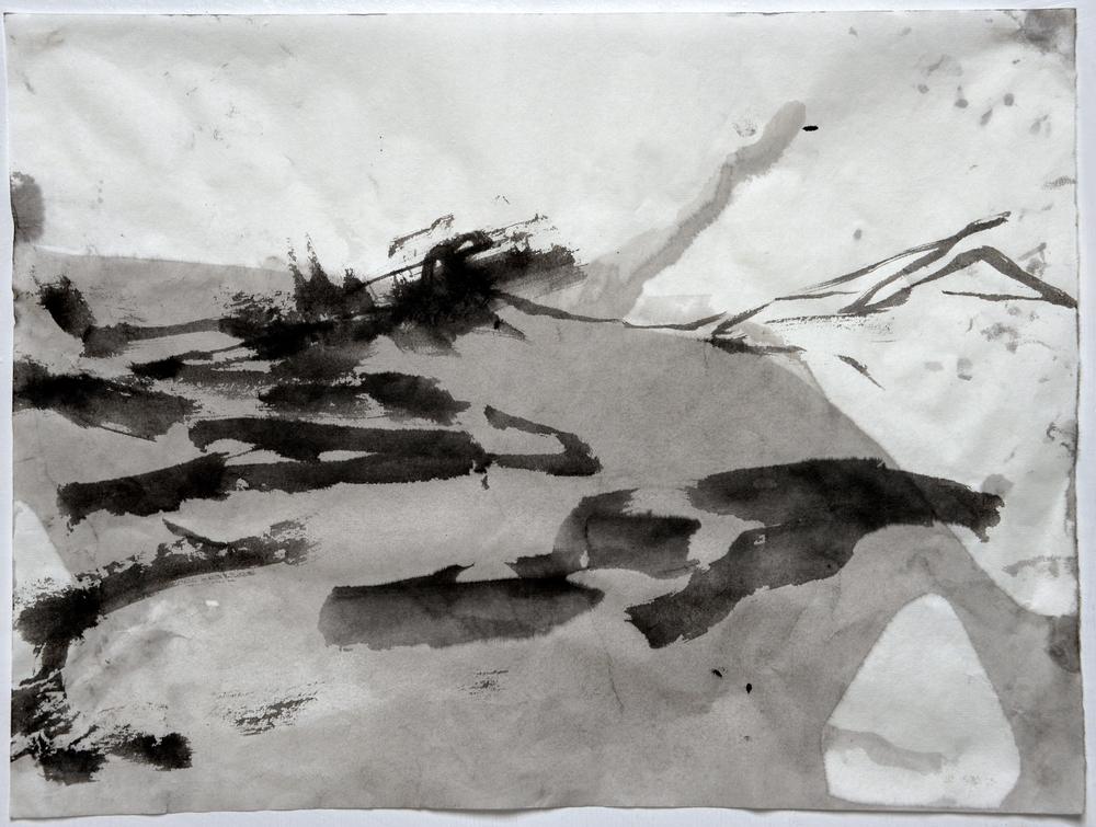 6.22.15VI  2015  ink on paper
