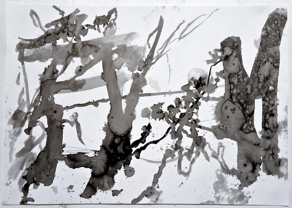6.24.15 I  2015  ink on paper