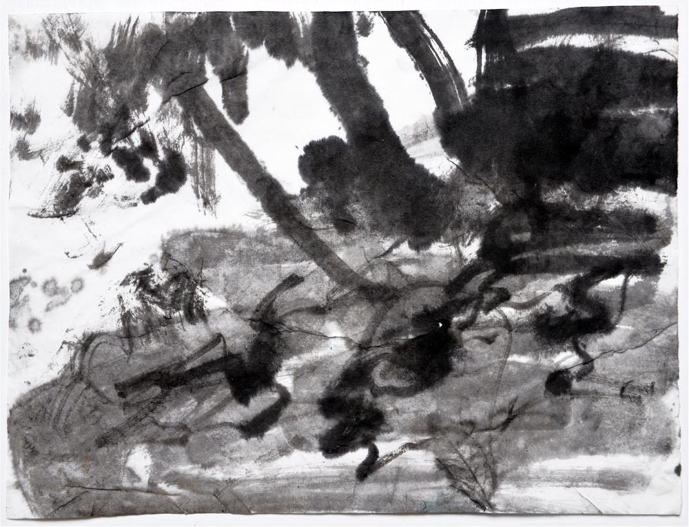 6.24.15 VI  2015  ink on paper