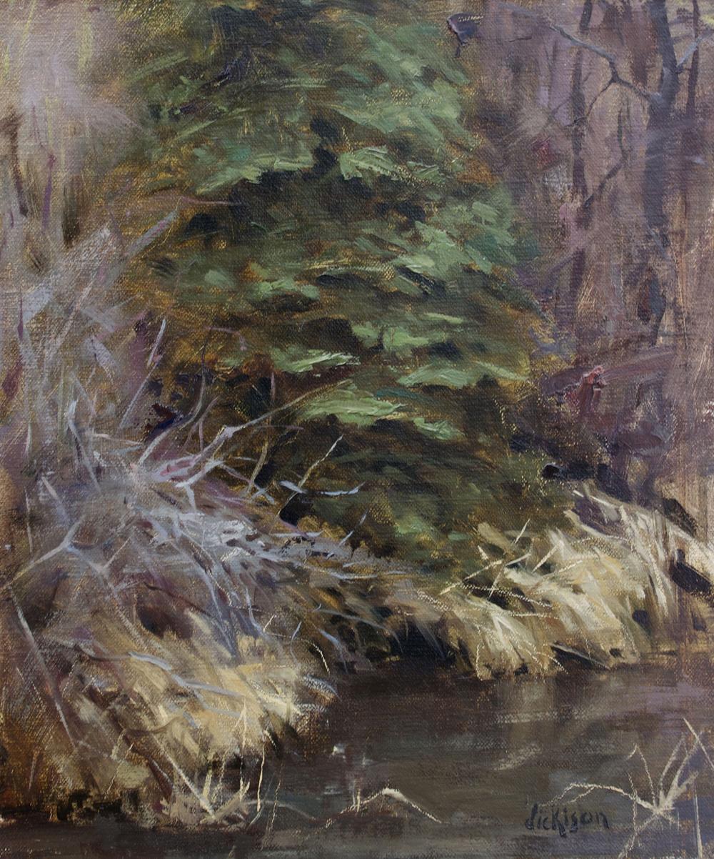 Paradise Creek Pine