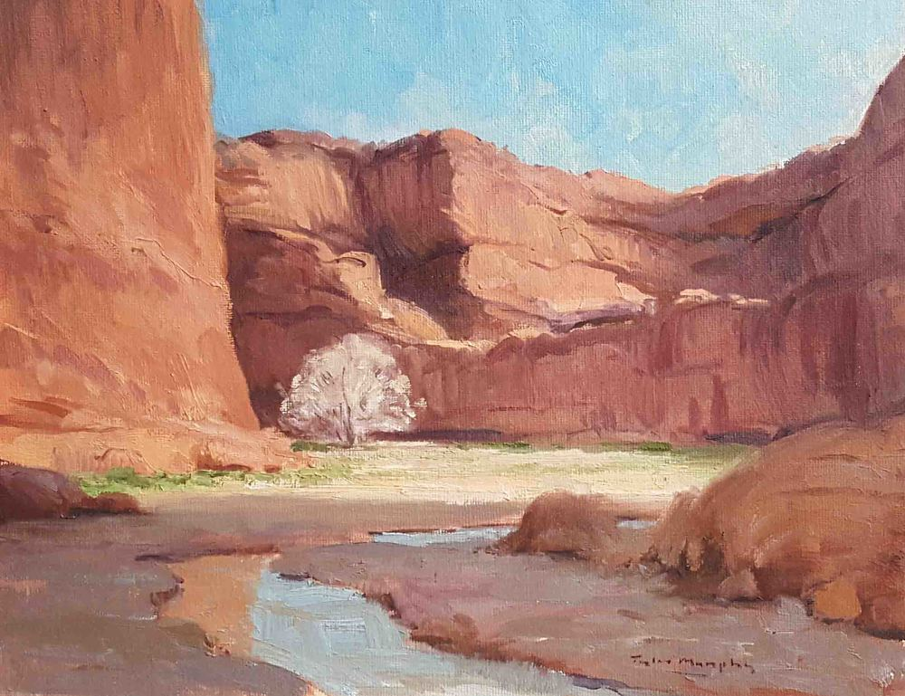 Down in the Bottom of Canyon de Chelly 11x14.jpg