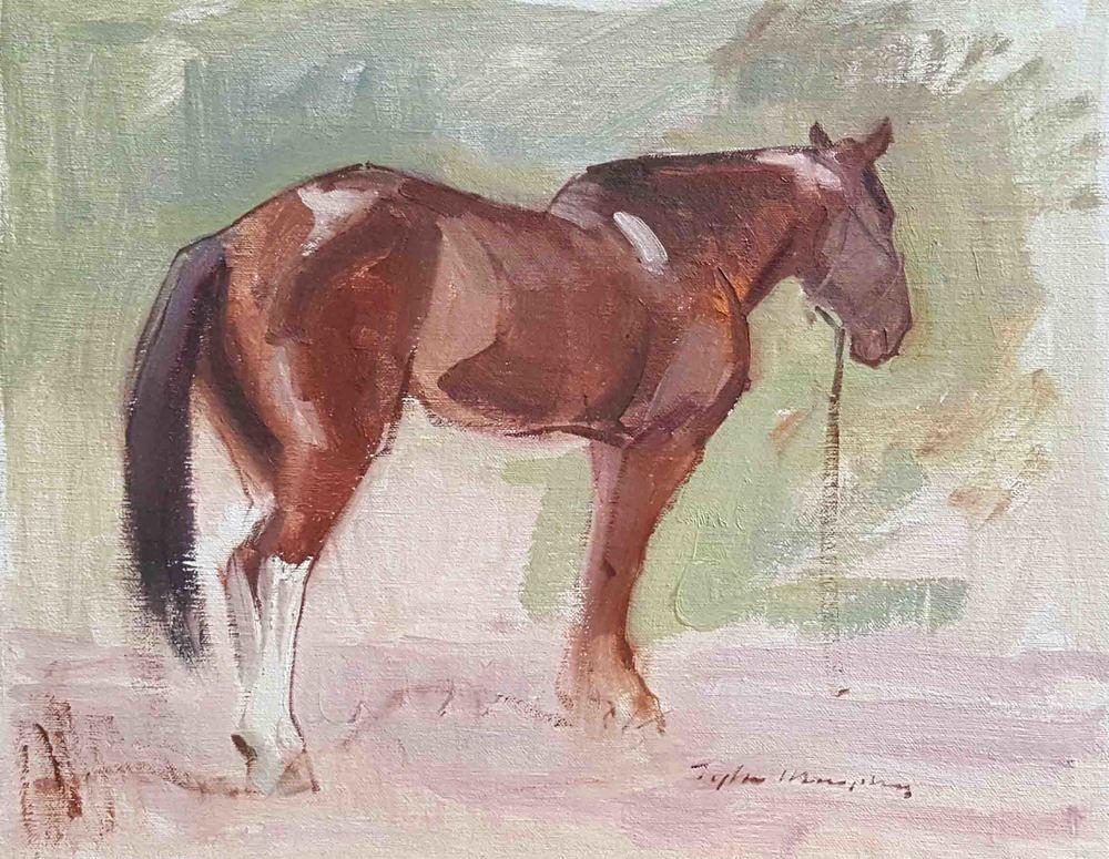 Paint Horse 12x16.jpg