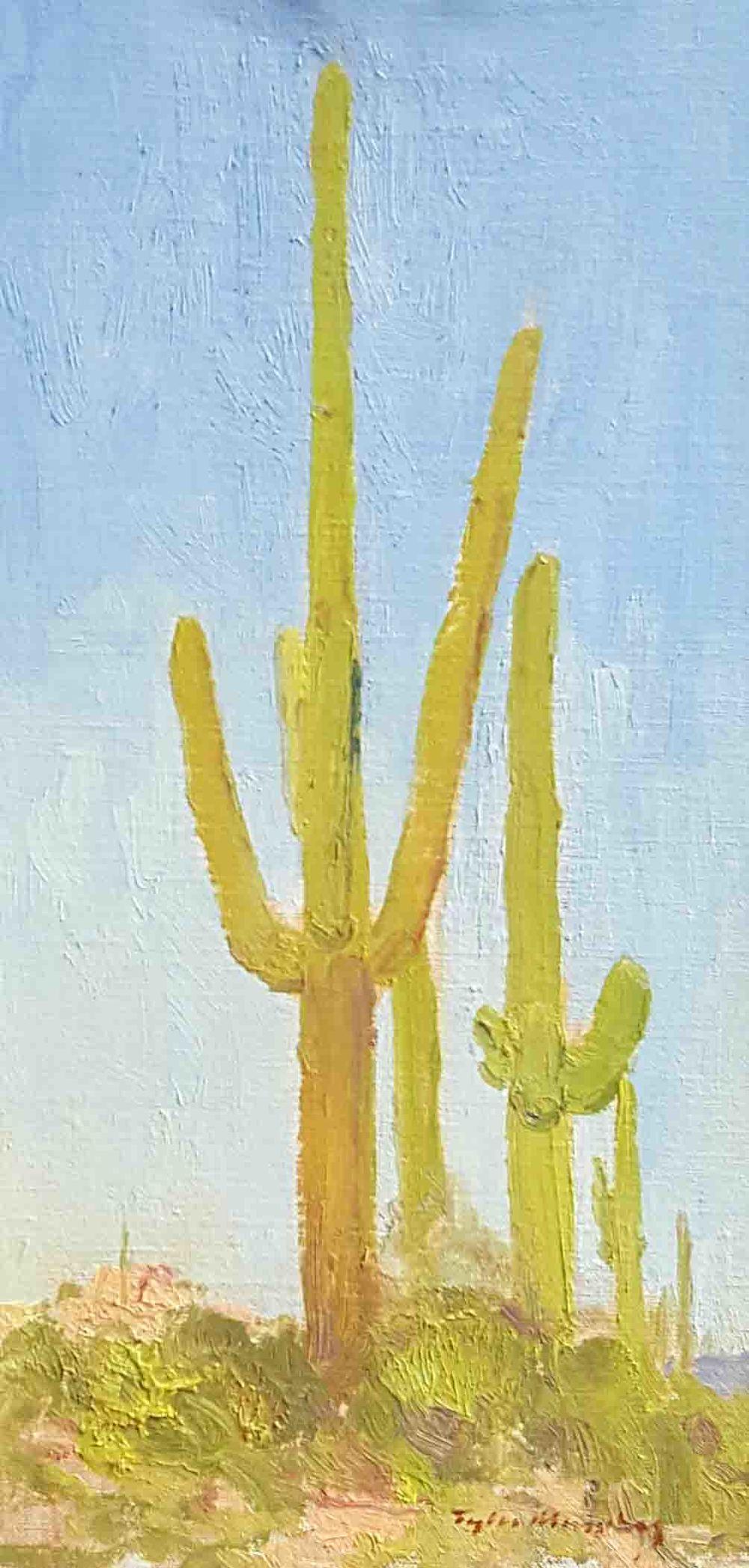 Saguaros 8x16.jpg