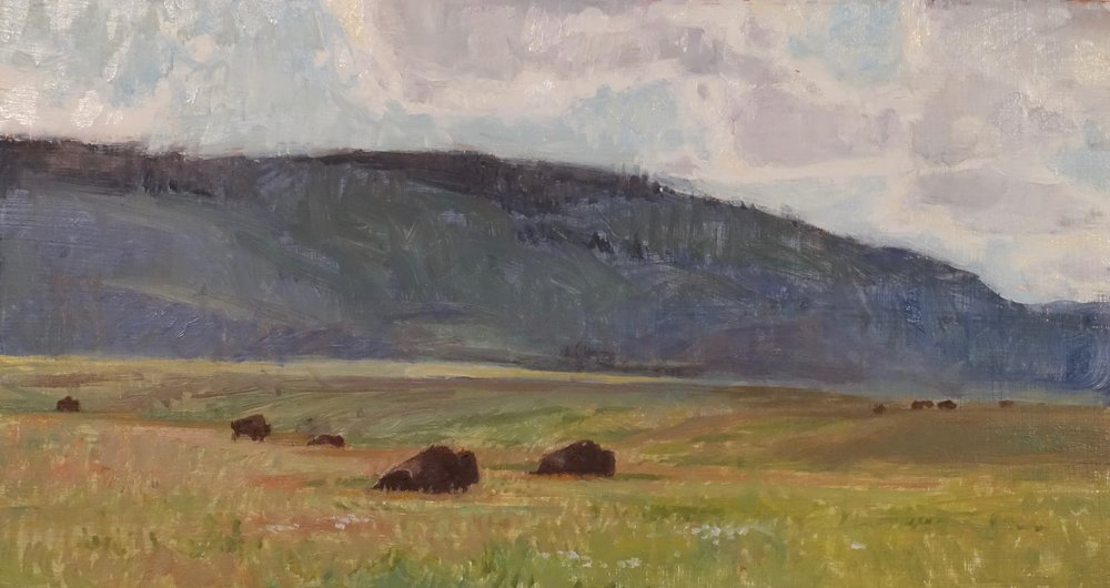NationalBisonRange_6.5x12_$500_Closson.jpg