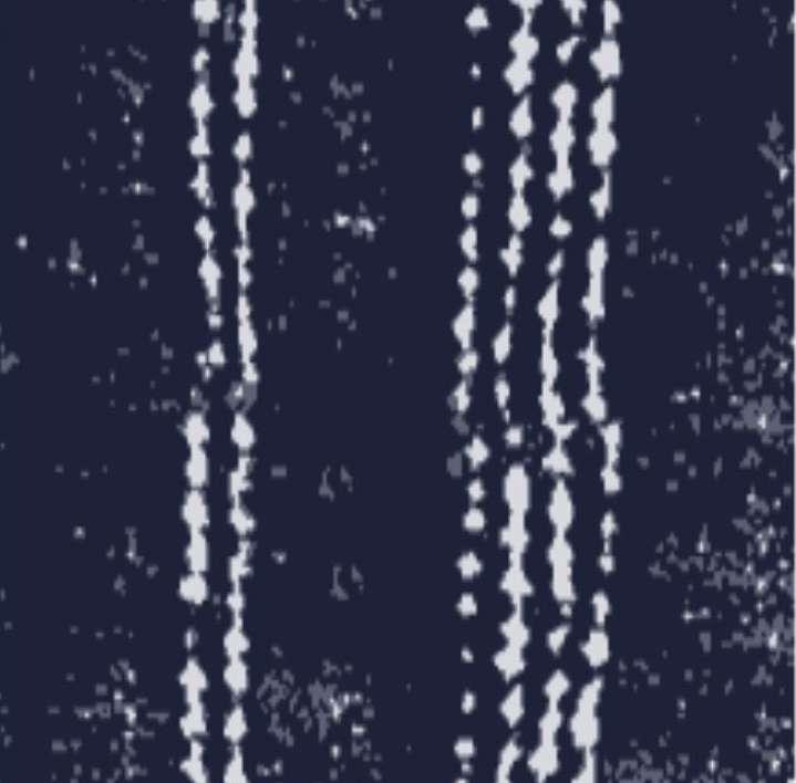 EF RUG 9 , 50x50 , 100 Knots (Design Plate).jpg