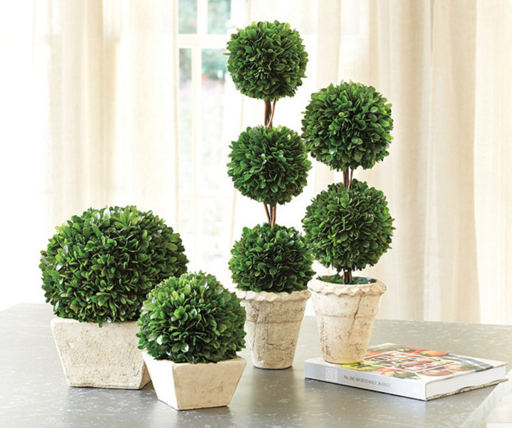 Boxwood Topiary - Green preserved boxwoods are the perfect pop of green in any situation. (check homegoods - they have a ton!) I love these from ballard.