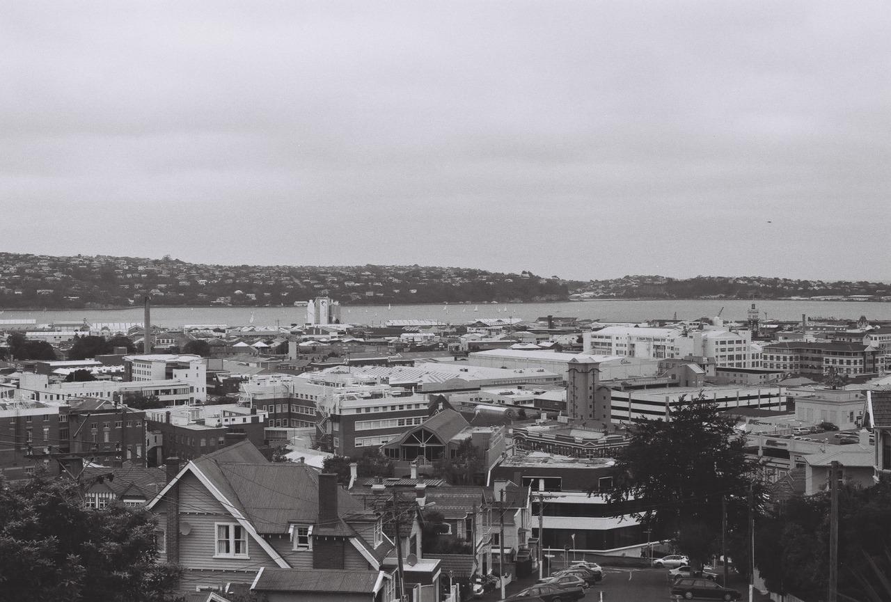 malesmalesmales :     Dunedin