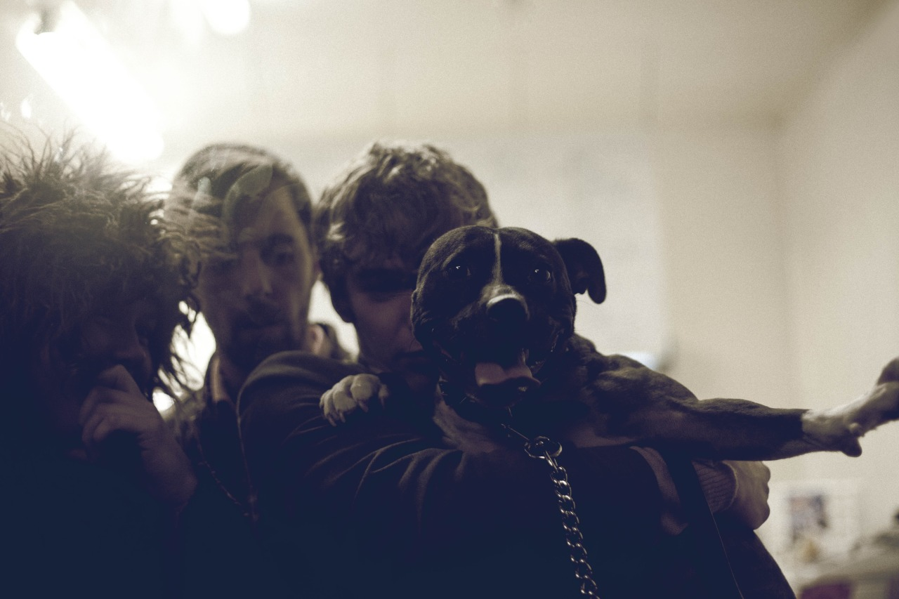 Last time we were together in Dunedin after a few beers at Inch Bar, our talented friend Emily Hlavac-Green photographed us in a fish and chip shop with our pal Linda the muscle dog. This is one of them.
