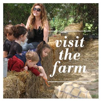 visit-chivas-fillmore-goat-farm.jpg