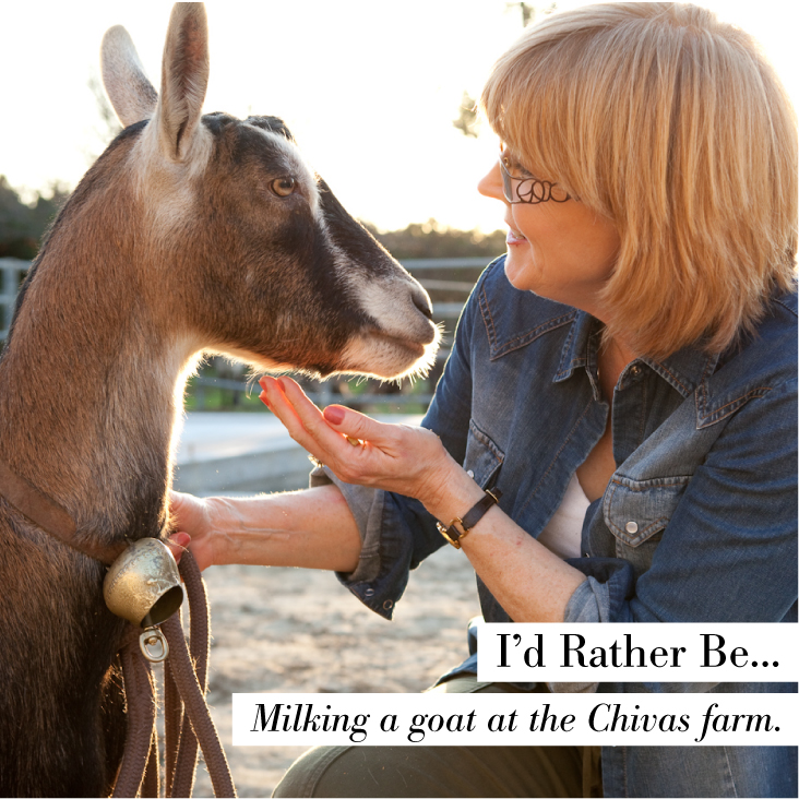 Chivas Fall Farm Day Social Media Image 4.jpg
