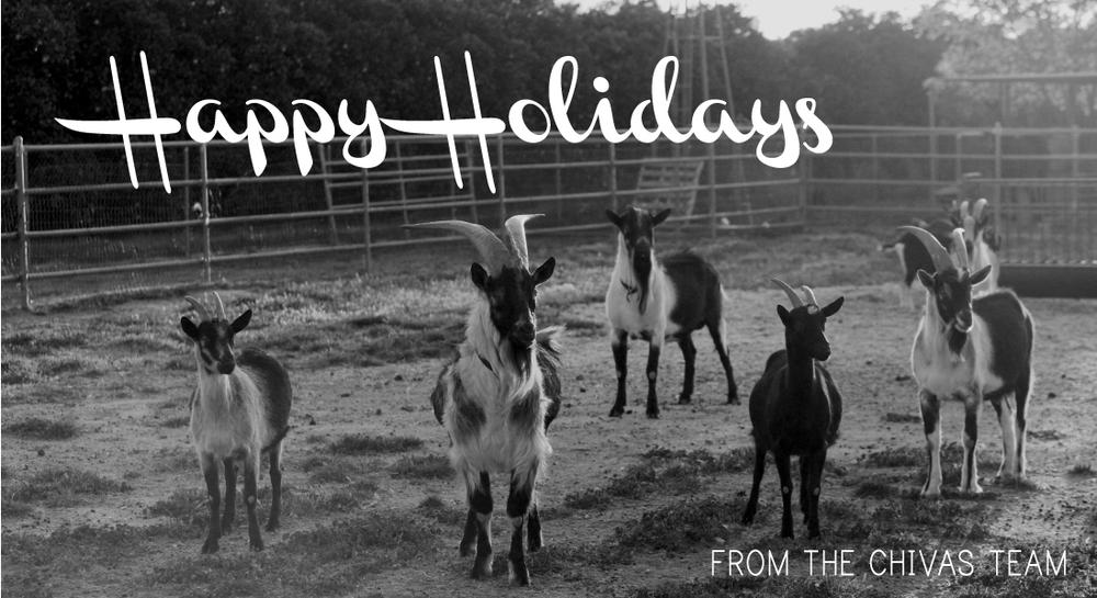2015 happy holidays-01.jpg