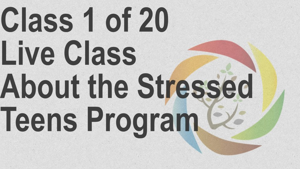 Class_1_of_20_Live_Class_About_the_Stressed_Teens_Program.jpg