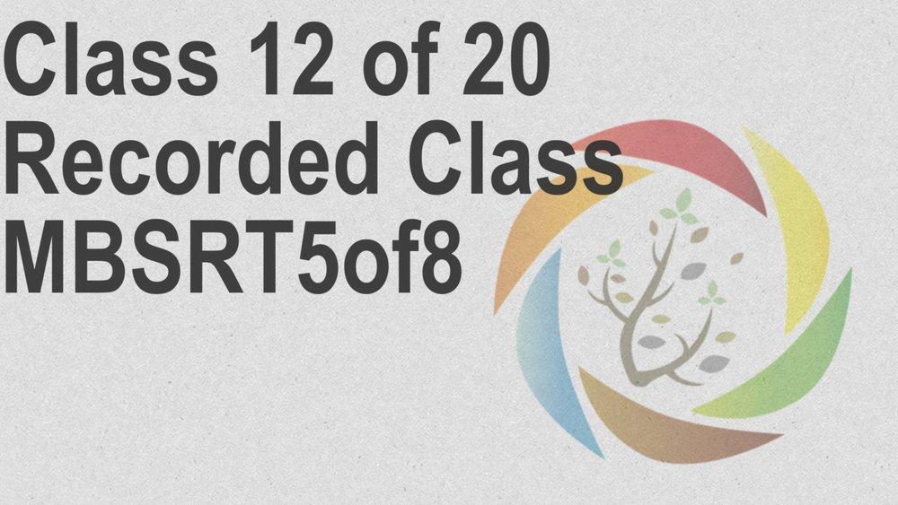 Class_12_of_20_Recorded_Class_MBSRT5of8.jpg