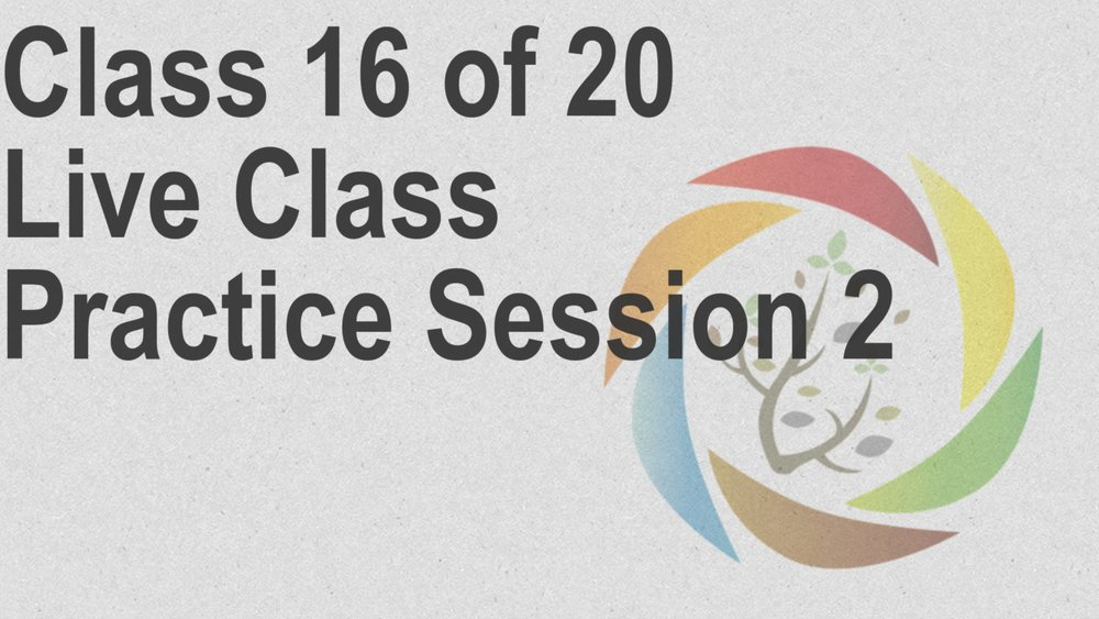Class_16_of_20_Live_Class_Practice_Session_2.jpg