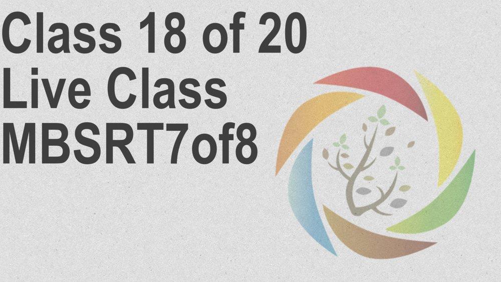 Class_18_of_20_Live_Class_MBSRT7of8.jpg
