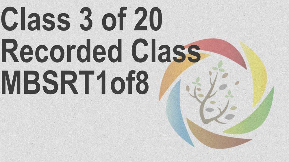 Class_3_of_20_Recorded_Class_MBSRT1of8.jpg