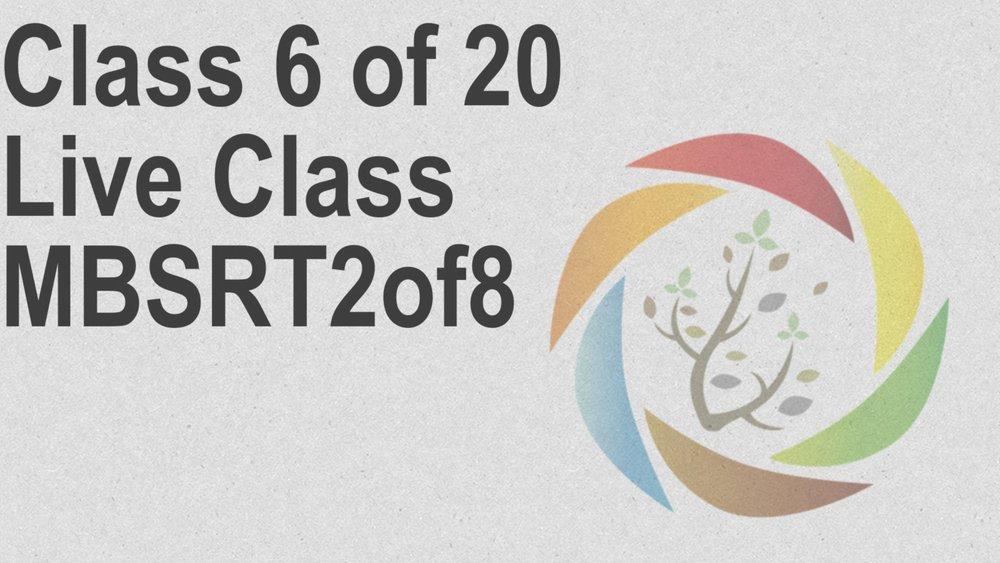 Class_6_of_20_Live_Class_MBSRT2of8.jpg