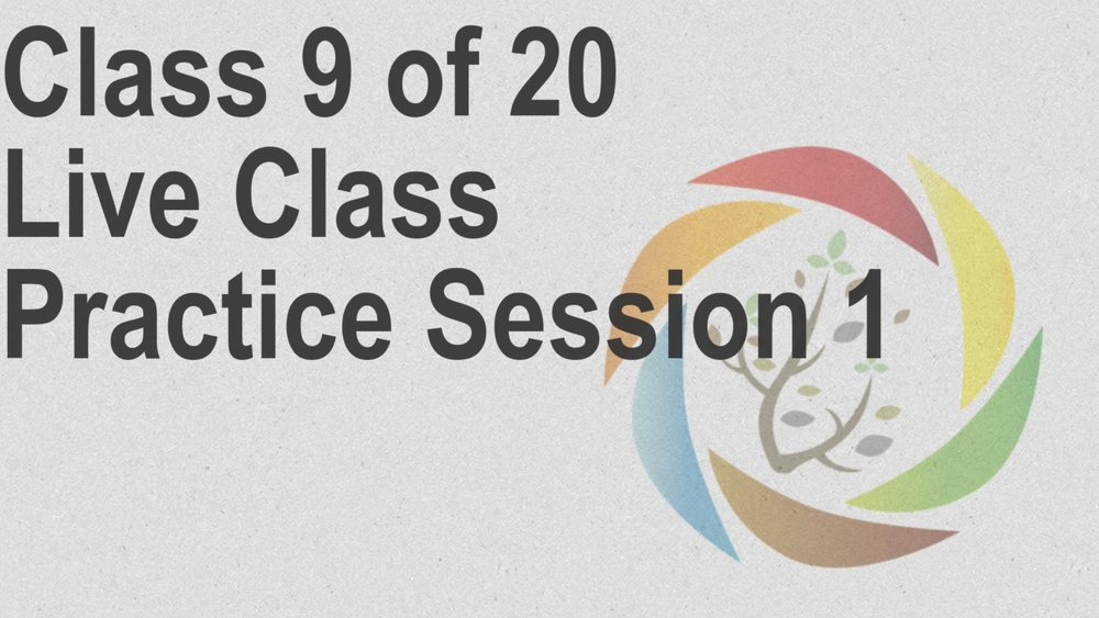 Class_9_of_20_Live_Class_Practice_Session_1.jpg