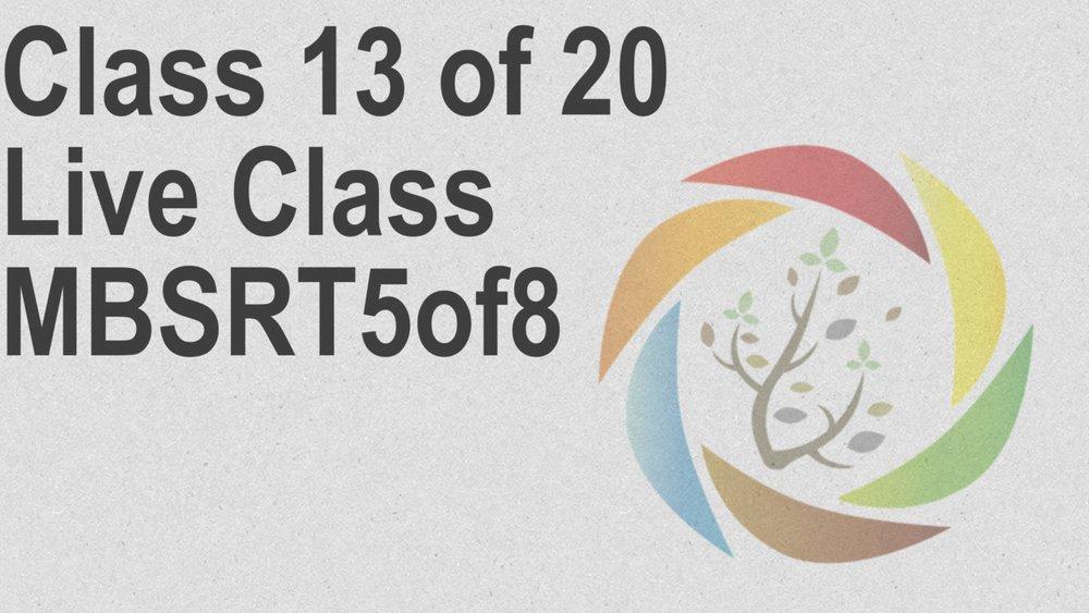Class_13_of_20_Live_Class_MBSRT5of8.jpg