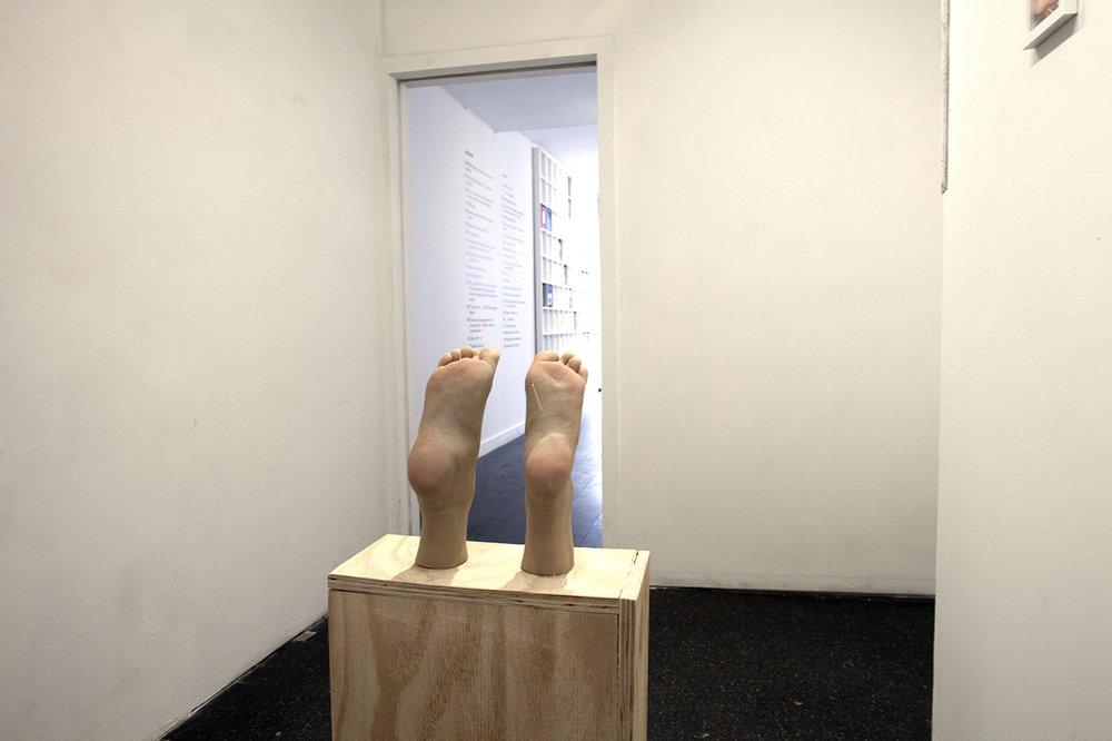Copy of Maryam Jafri. War On Wellness. Installation view