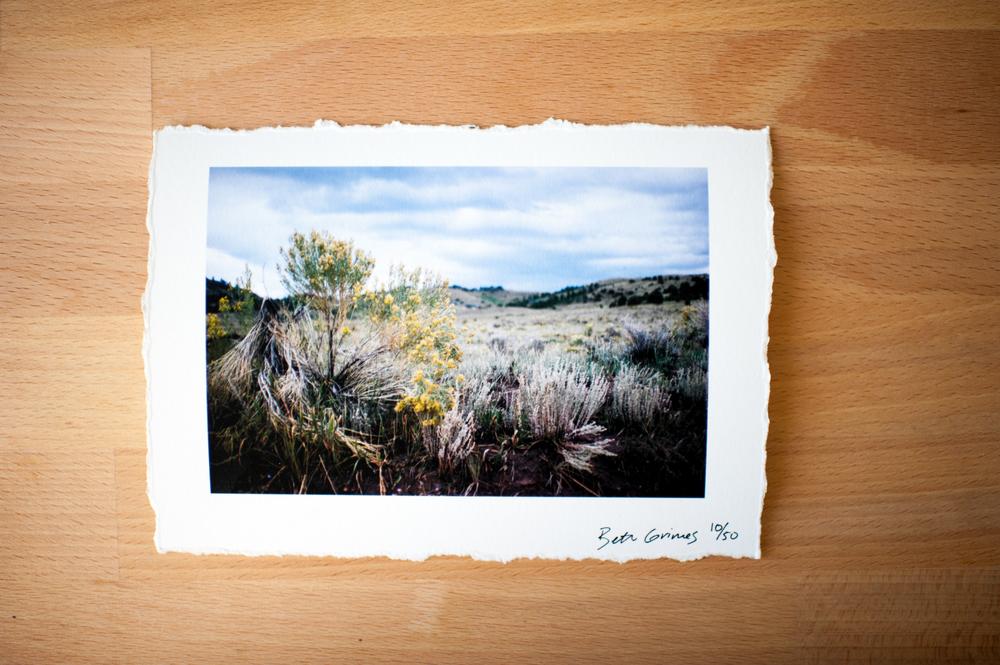 Prints-007.jpg