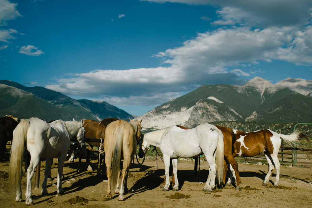 Horseback Riding-10.jpg
